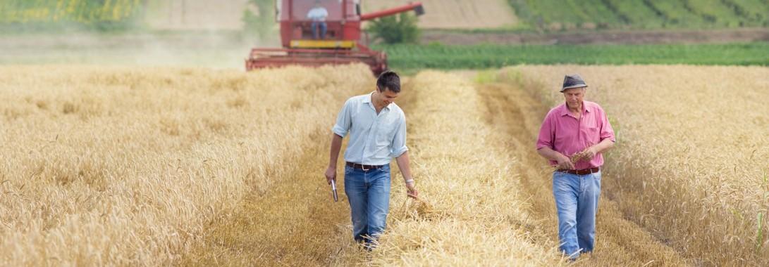 Odszkodowania za wypadki w rolnictwie