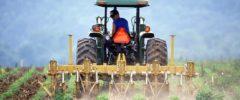 Wypadek w gospodarstwie rolnym? Warto mieć ubezpieczenie OC rolnika