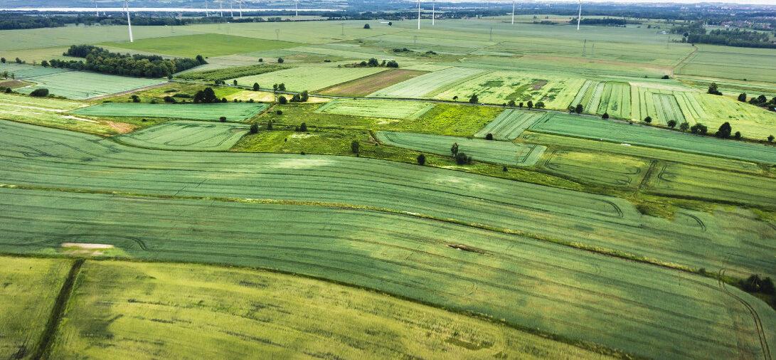 Zmiana miejscowego planu zagospodarowania przestrzennego a odszkodowanie dla właściciela nieruchomości